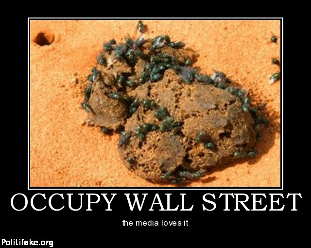 occupy wall street essay