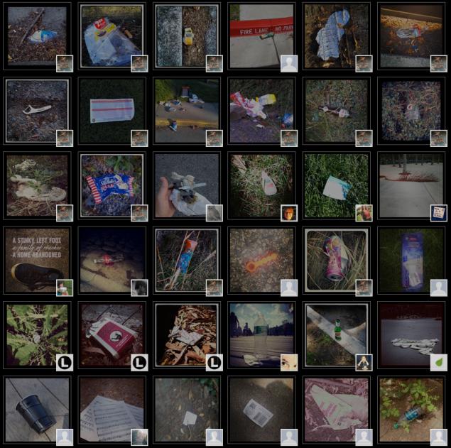 Screenshot from the Litterati website.