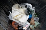 The insides of a trash can. Note high volumes of pet manure, as well as many items that don't decomp at all.
