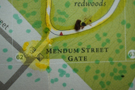 """Detail of map showing """"piss gate,"""" the main entrance with the most strucutral damage due to pet urine."""