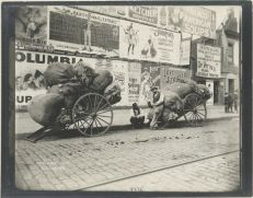 Rag cart. (1896). Photo: Alice Austen. NYPL.