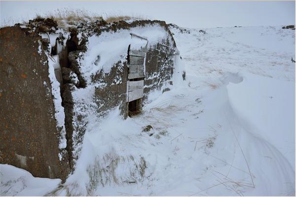 Image from ruin vinette A Brief Seasonal Ruin-memory A Brief Seasonal Ruin-memory  by Þóra Pétursdóttir
