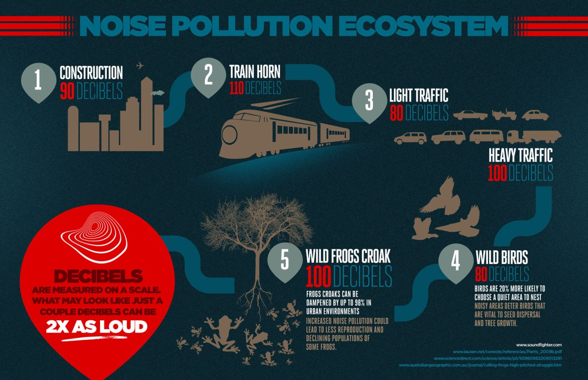 noise pollution as a hindi project Describe types of pollution, sources, harmful effects on human health and control  of air pollution, indoor air pollution, noise pollution • describe water pollution.