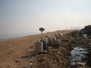 Ghazipur Landfill, Delhi, India. Photo by the author.