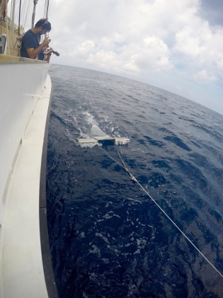 The manta trawl in action. It skims the surface of the water collecting all floating items in its mesh. Photo by Max Liboiron.