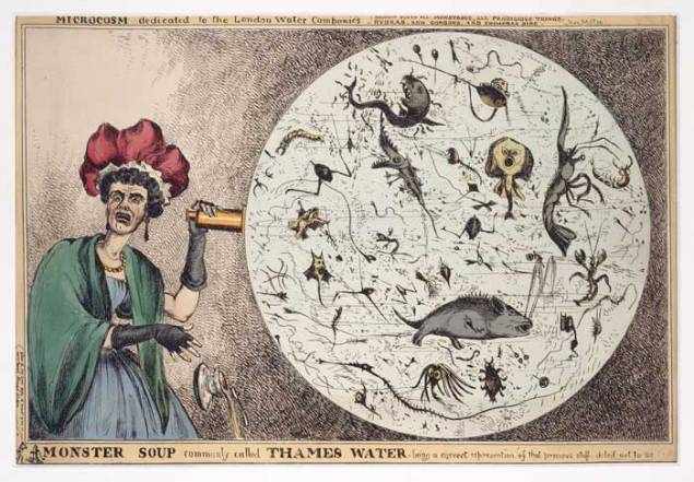 "Cartoon of a woman horrified by a microscopic view of drinking water from the Thames."" Courtesy of the World Digital Library."